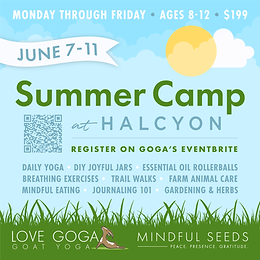 Summer Camp at Halcyon