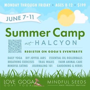 Summer Camp at Halcyon