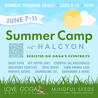 Summer Camp at Halcyon (Ages 8-12)