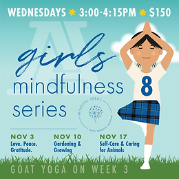 8th Grade Girls' Mindfulness Series