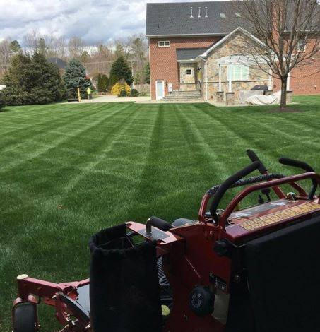 mower and grass.jpg