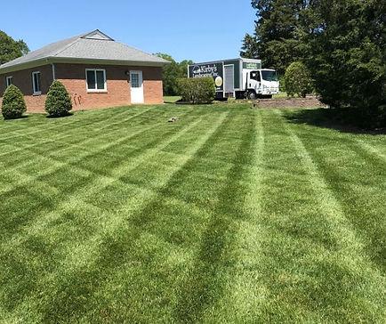 grass and truck.JPG