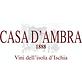 Casa d'Ambra logo square.png