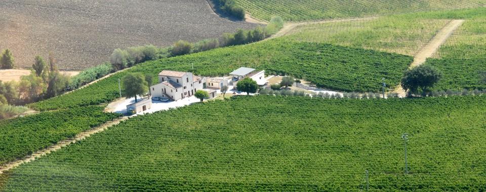 Monte Schiavo 6