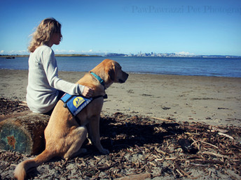 Pawtrait Event to Benefit Canine Companions for Independence