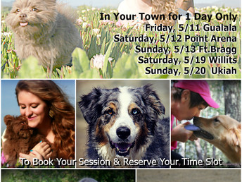 2018 Spring Mini-Sessions Are Coming!