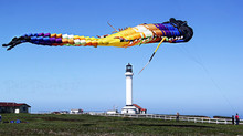 Giant Kites were flying high at the Point Arena Lighthouse's Annual Wind and Whale Celebration!
