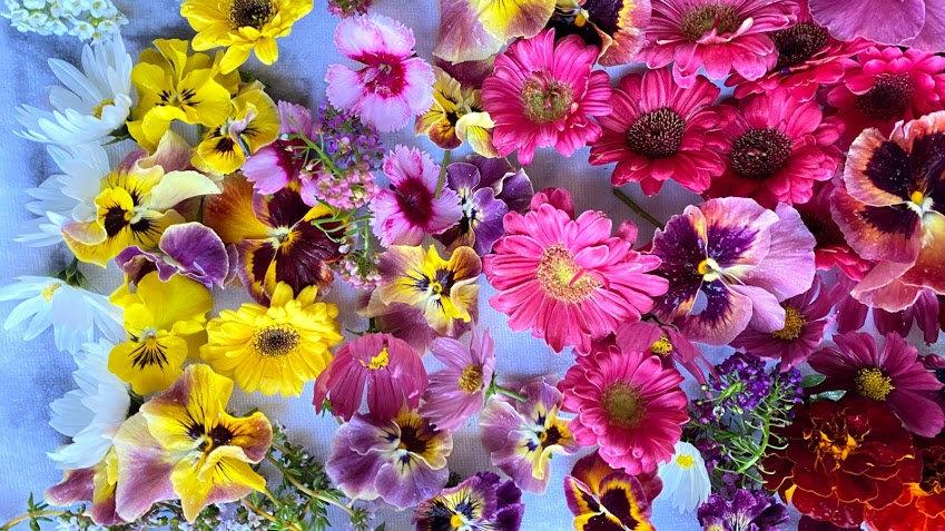 Edible Flowers (qty 125)
