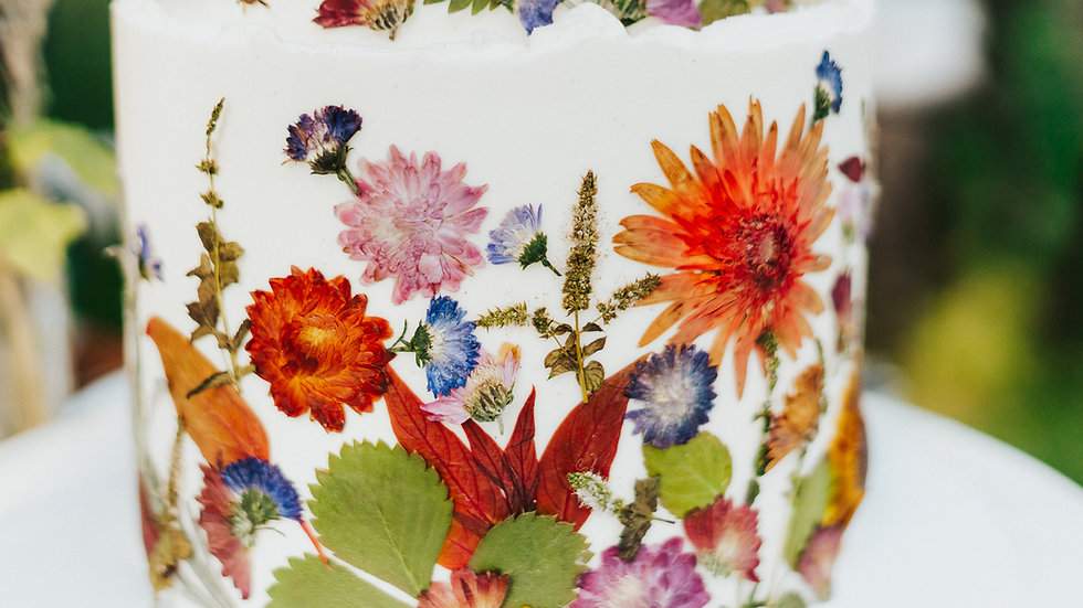 Pressed Flowers & Herbs