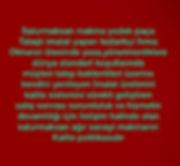 667bfc49-5786-4880-8519-4d6c37b0dd23.jpg