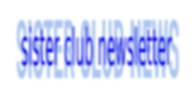 SNC Newsletter Logo copy.jpg