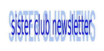 SNC Newsletter Logo copy.jpg