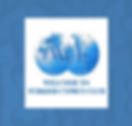 WTurkCypIC Logo.png