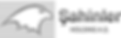 sahinler-logo-v2_edited.png