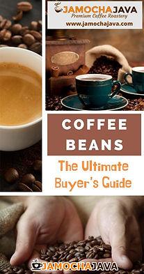 buyrs guide 2.jpg