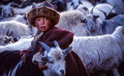 tibet373