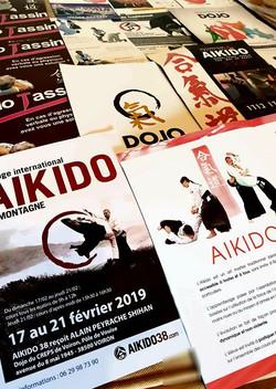 Traditional Aikido.