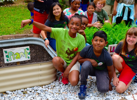 The Learning Garden Project