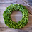 "Thumbnail: 20"" Preserved Boxwood Round Wreath"