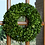 "Thumbnail: 16"" Preserved Boxwood Round Wreath"