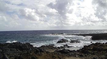 arubascene1 cropped.jpg
