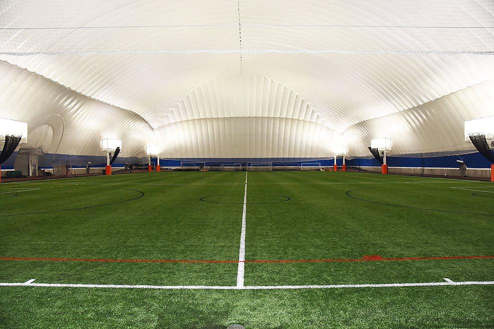 Dome New Turf Aug 2021.jpg