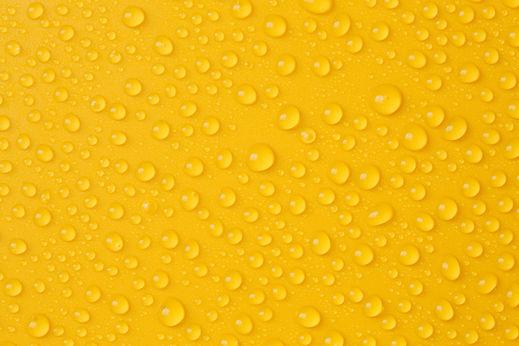Water-drops on yellow.jpg