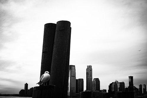 Gotham in Grey 04