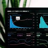 The Data Analyst.jpg