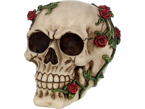 Rose From Beyond Skull by Nemesis Now