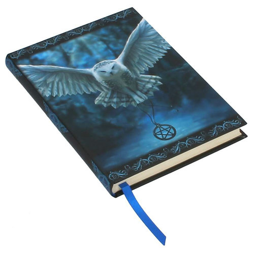Awaken Your Magic Journal by Anne Stokes