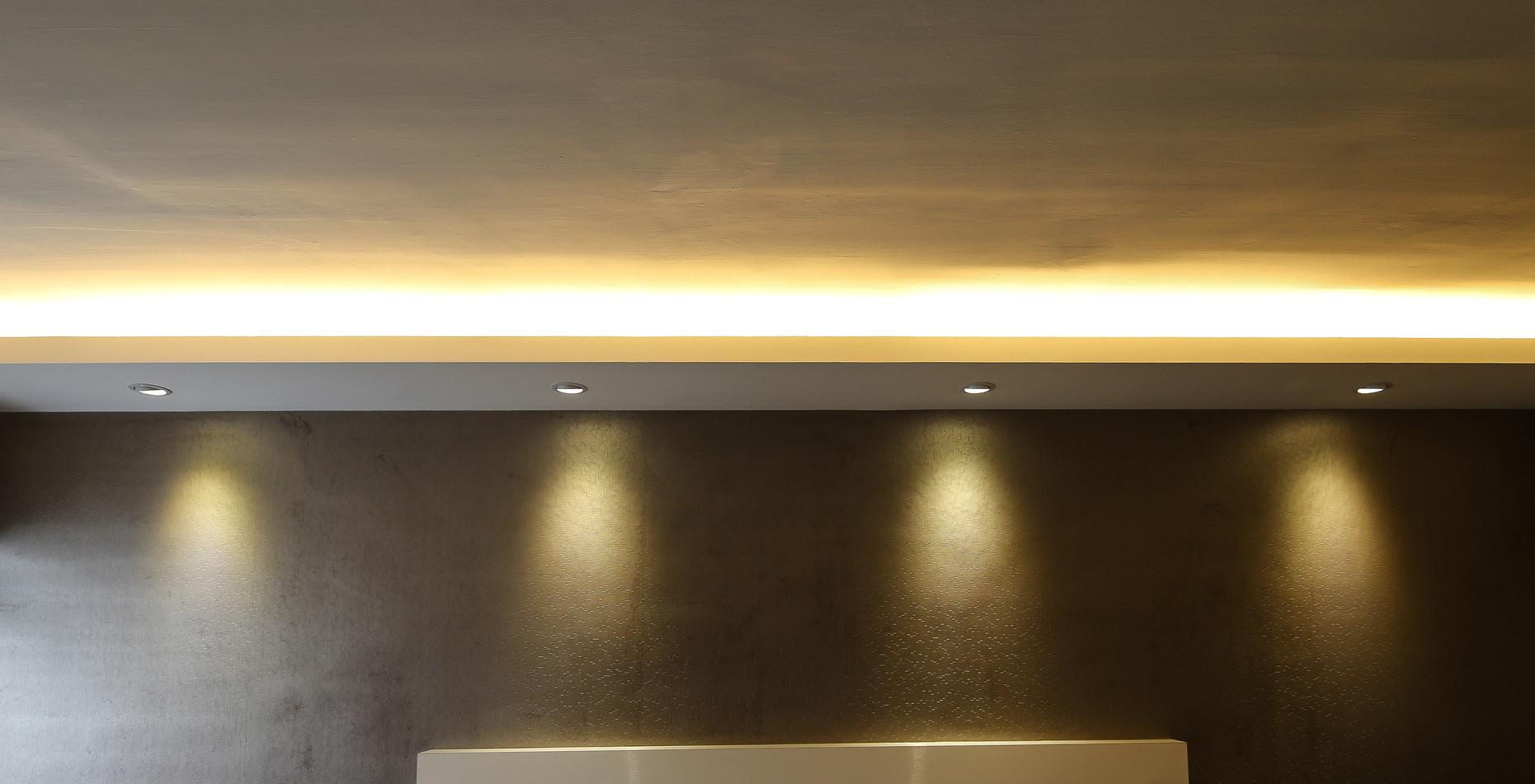 LED Spotlight & LED T5 Tube