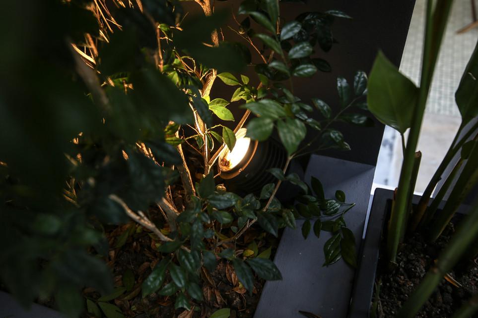 Ground Mounted LED Light