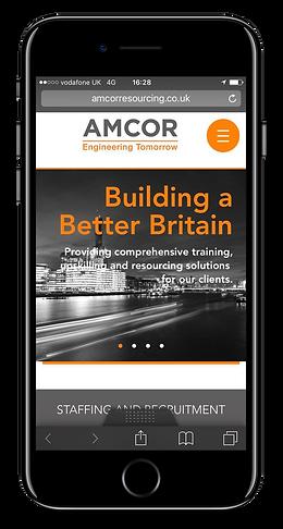 IDDE develops Amcor's website and helps grow their business online.