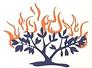 Burning Bush.png