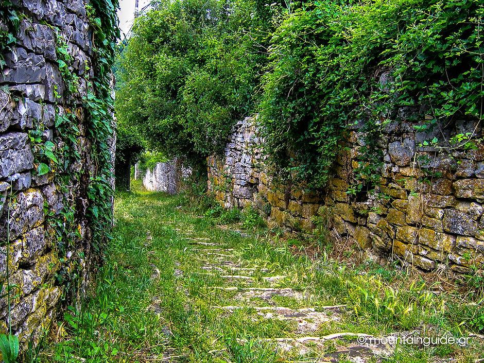 Nikos_Hadjis_Mountain_Guide_Trekking_Greece_Zagori