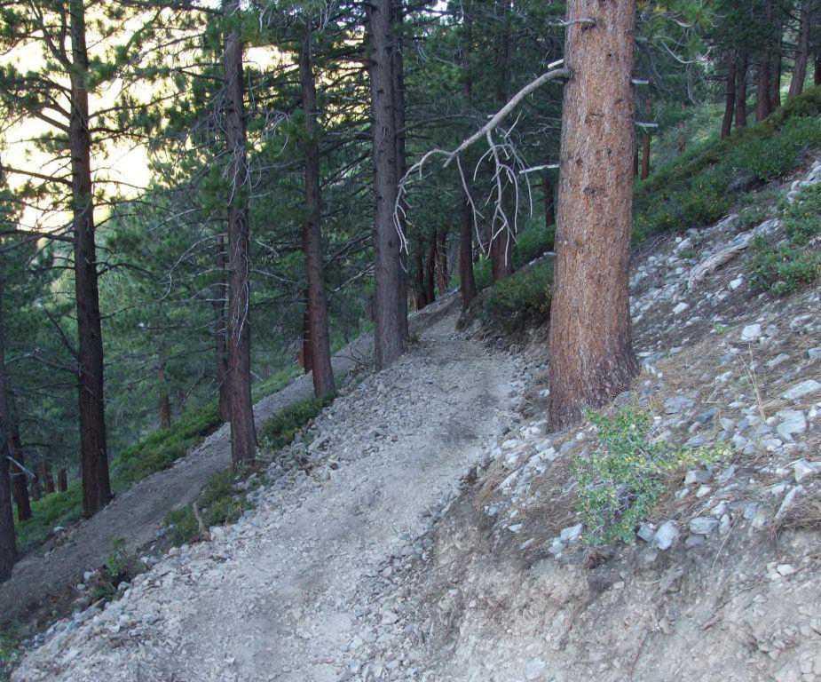 Genoa Hiking Trail