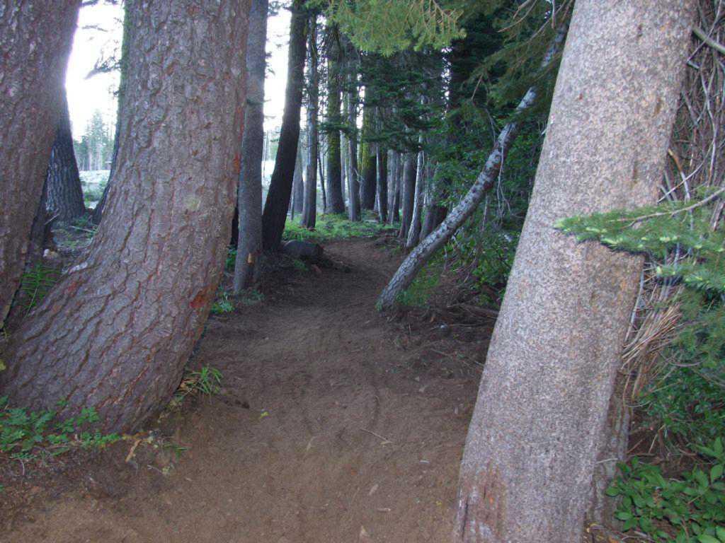 Suger Bowl Ski Area