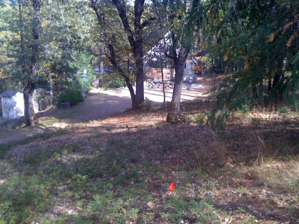 Auburn, CA Trail