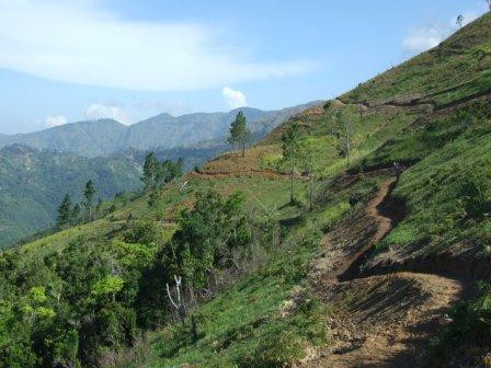 Jamaica Trail