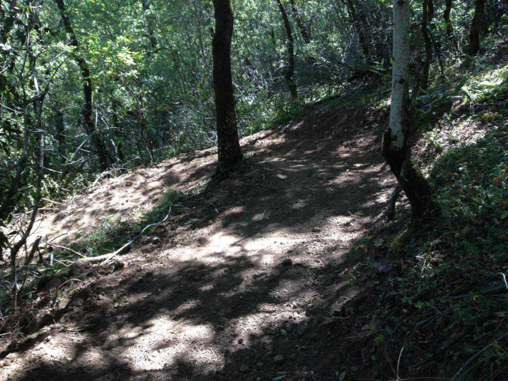 Bay Area Trail