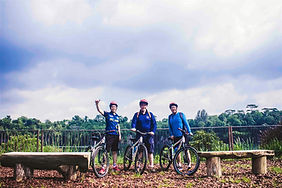 ubin bike trail_edited.jpg