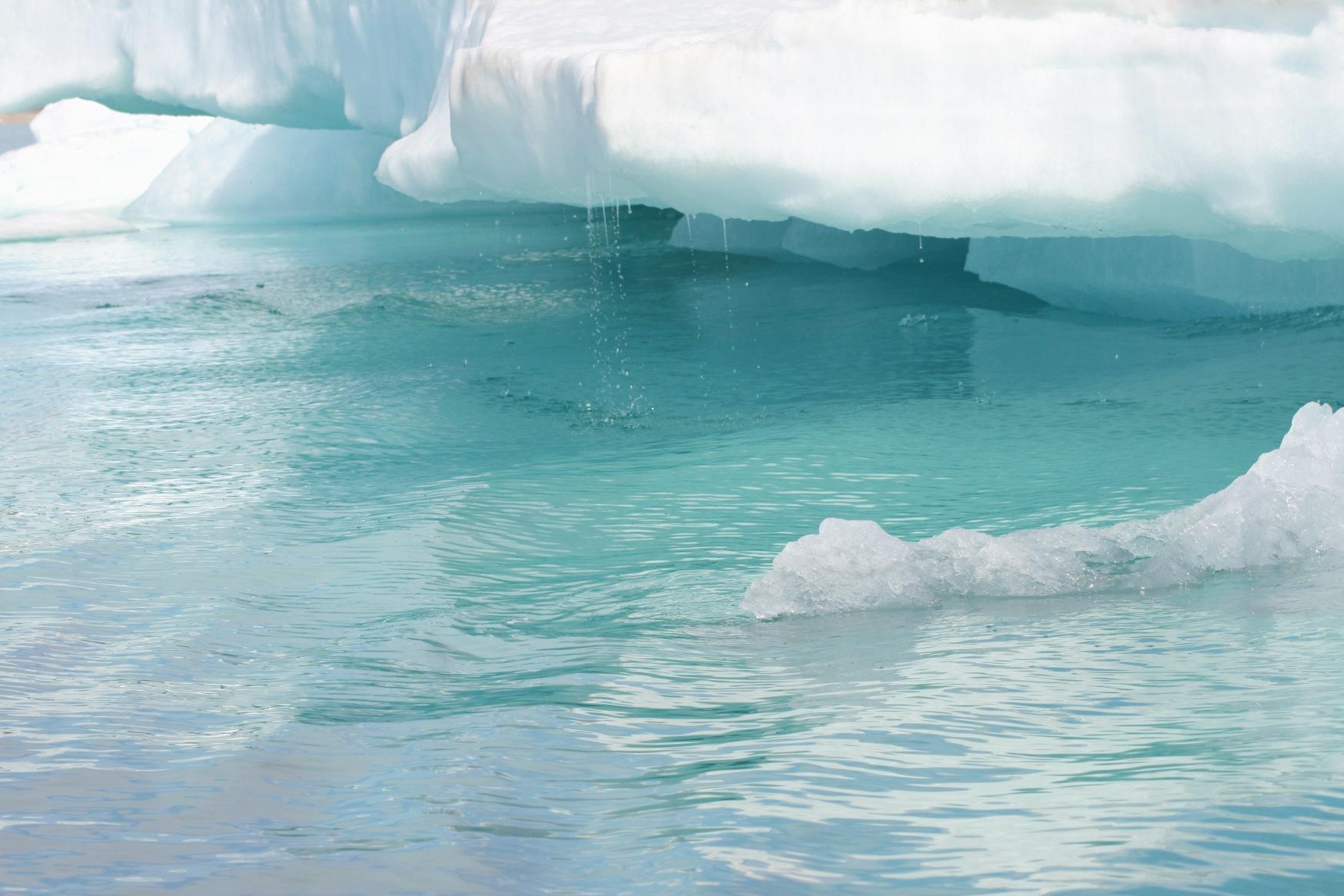 Arctic meltdown.jpg
