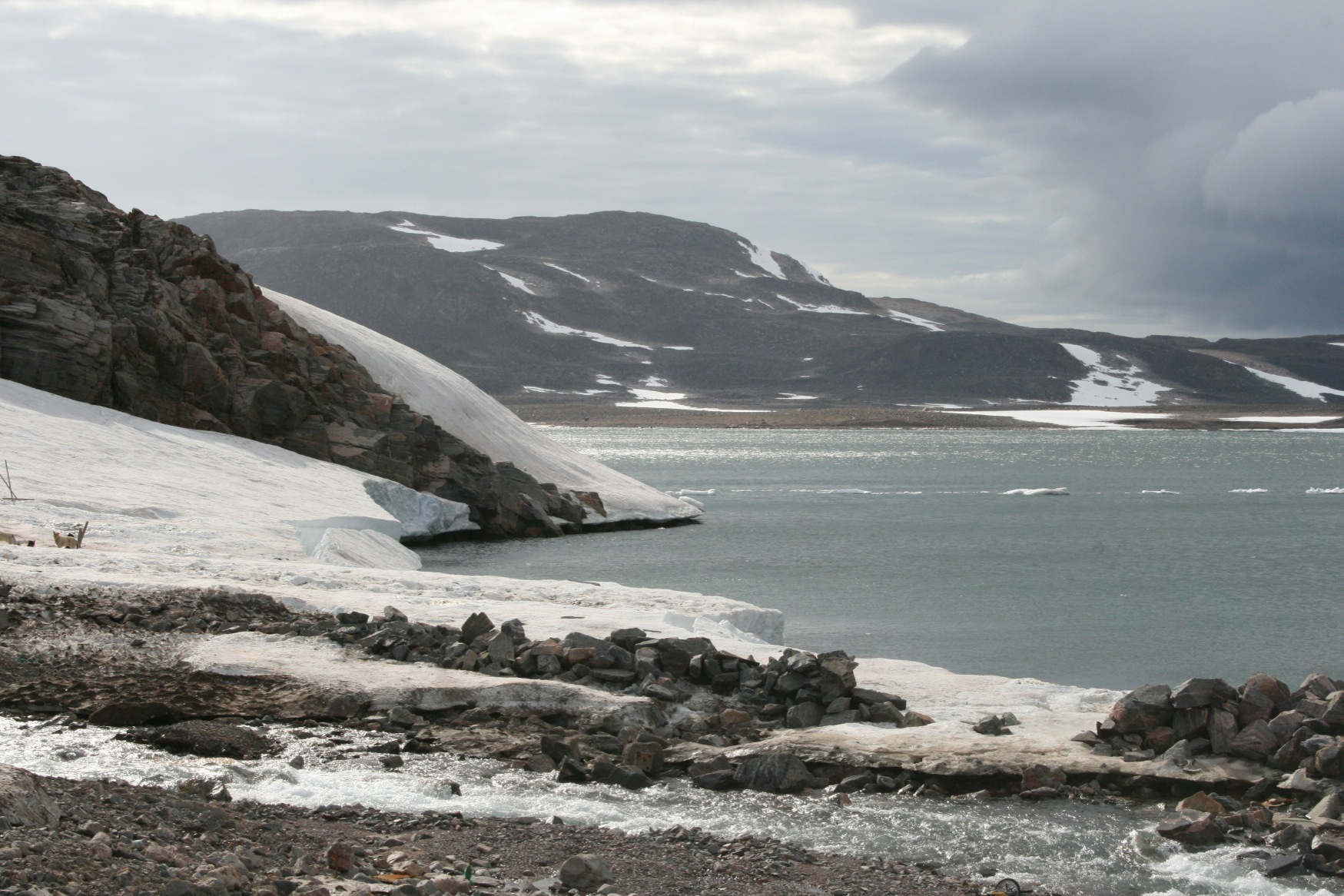 Arctic .jpg