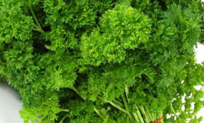 Parsley Bag, 100g