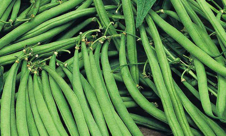 Green Beans Fine 300g