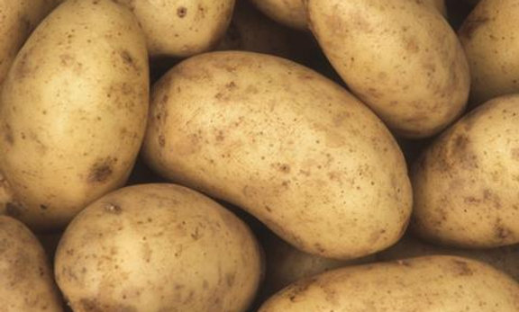 Potatoes, White, Loose 1kg