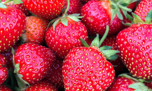 Strawberry TRAY 1kg