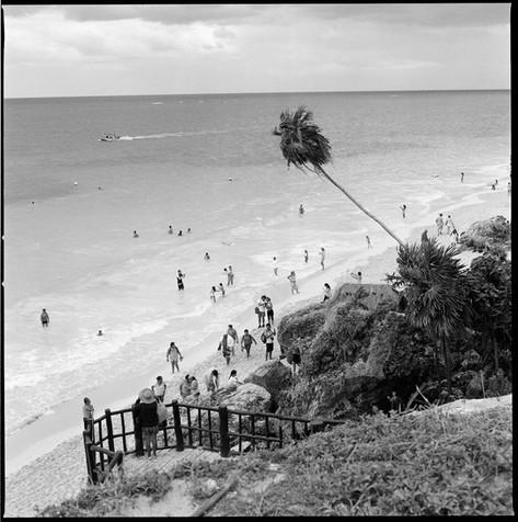 Chris Schmid - Palme Tulum, Mexiko