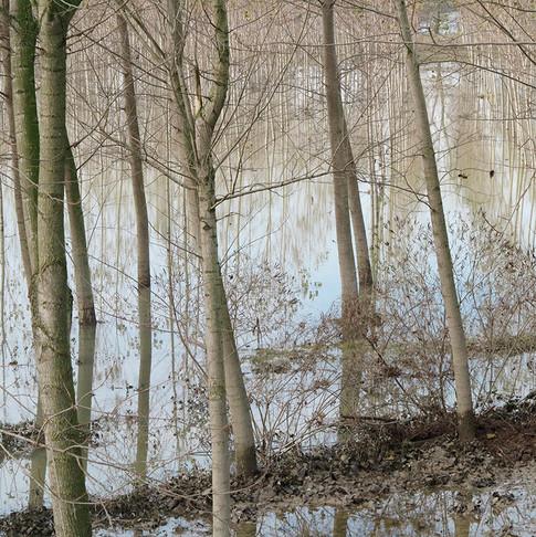 Anna Belloni - Fluss Po
